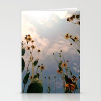 MAUA Stationery Cards