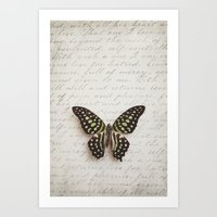 Graphium agamemnon butterfly Art Print