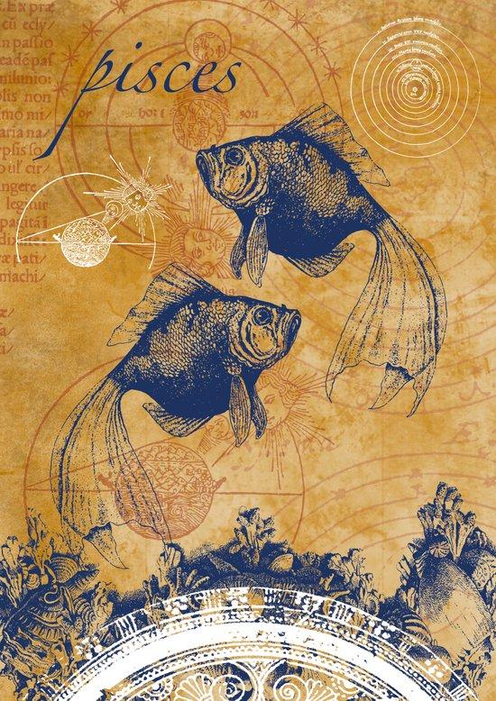 pisces   fische Art Print