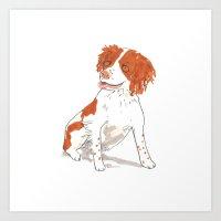Springer Spaniel Dog Art Print