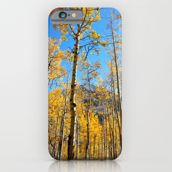 Enchiladas in the Trees 2 iPhone & iPod Case