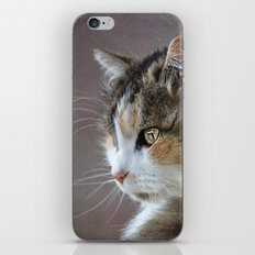 Cassie's Portrait iPhone & iPod Skin