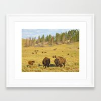 Buffalo Soldiers 2 Framed Art Print