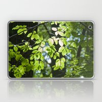Light in the leaves Laptop & iPad Skin