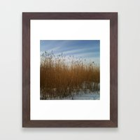 Waterside Framed Art Print