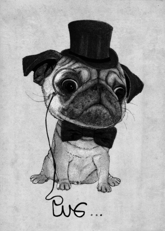 Pug (gentle pug) B&W version Art Print