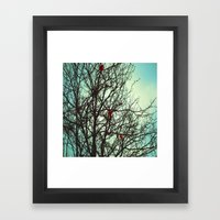 Cardinals in Winter Branches Framed Art Print