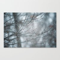 Snowy Winter Branches Canvas Print