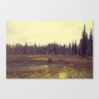 Four Mile Meadow 01 Canvas Print