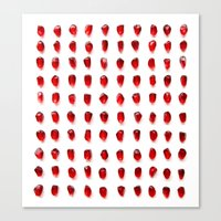 pomegranate seeds, organized neatly Canvas Print