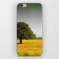 October Trip iPhone & iPod Skin