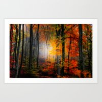 Light Colors Art Print
