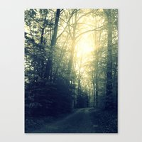 Take a Back Road Canvas Print