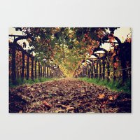 The Halls Of Napa Canvas Print