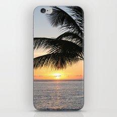 Sunrise And Palm Tree iPhone & iPod Skin
