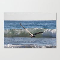 Fly Away Gull 6950 Canvas Print
