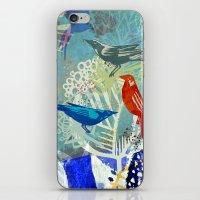 Birds in the backyard. iPhone & iPod Skin