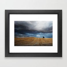 Lonely tree waiting for the storm Framed Art Print