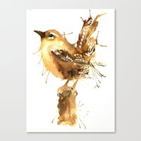 Mr Wren Canvas Print