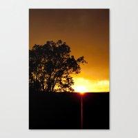 Sunspike Canvas Print