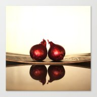 Onions And Reflections  Canvas Print
