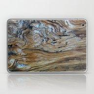 Flowing Through Ages Laptop & iPad Skin