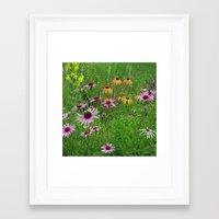 Meadow Flowers Framed Art Print