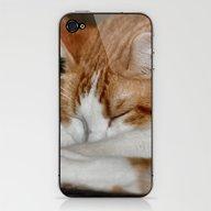 Sleepy Arnie iPhone & iPod Skin