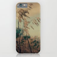 iPhone & iPod Case featuring Winter Field by Olivia Joy StClaire