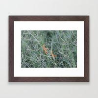 Hoppers Framed Art Print