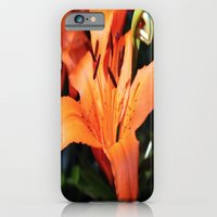 iPhone & iPod Case featuring Garden Fire by Kristi Jacobsen Photography