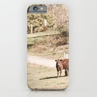 iPhone & iPod Case featuring How Now! by Elina Cate