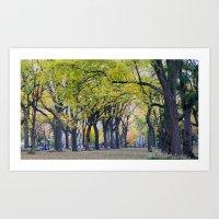 Central Park Fall Series… Art Print