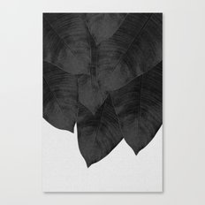 Banana Leaf Black & White I Canvas Print