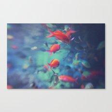 Fish Blur Canvas Print