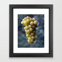 Harvest time ... 8508 Framed Art Print