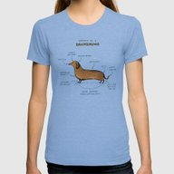 Anatomy Of A Dachshund Womens Fitted Tee Tri-Blue SMALL