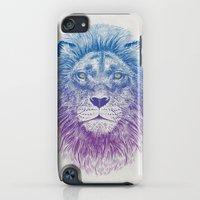 iPod Touch Cases featuring Face of a Lion by Rachel Caldwell