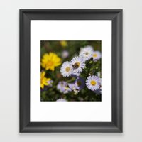 Looking for honey for you Framed Art Print