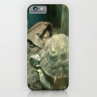 Giant Turtle iPhone 6 Slim Case