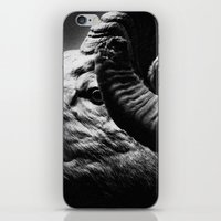 Tom Feiler Black and White Ram iPhone & iPod Skin