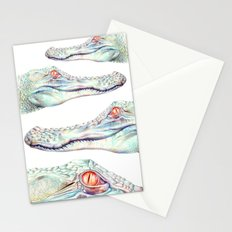 Albino Alligator Stationery Cards