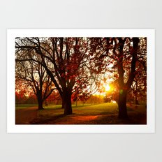 Autumn Sun Art Print