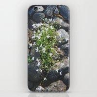 Flora iPhone & iPod Skin