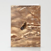 A Sparrow On Catails Stationery Cards