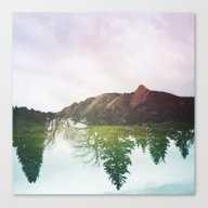 DOUBLE TAKE Canvas Print
