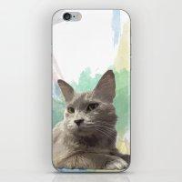 Gail the Cat iPhone & iPod Skin