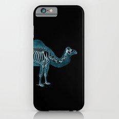 Camel X-ray - Camel Print - Camel Wall Art - Animal X-ray iPhone 6 Slim Case