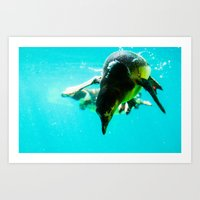 Dive 2 Art Print