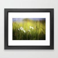 Daisy Landscape Framed Art Print